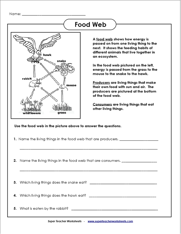 Worksheets - Allie Maloney's EDUG 812 Website