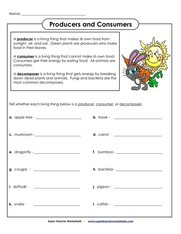 Producer Consumer Worksheet Free Worksheets Library | Download and ...